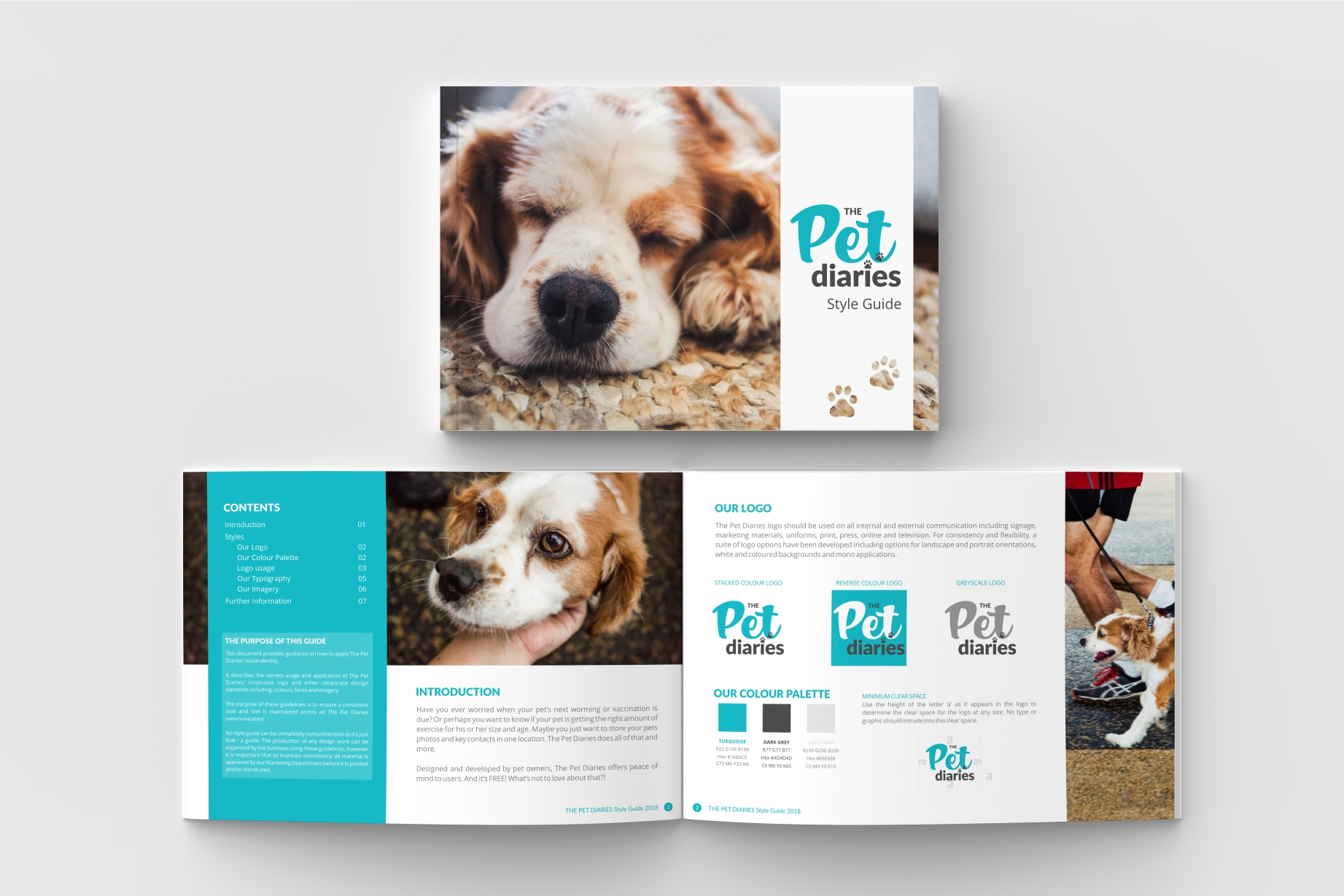 Style guide - The Pet Diaries